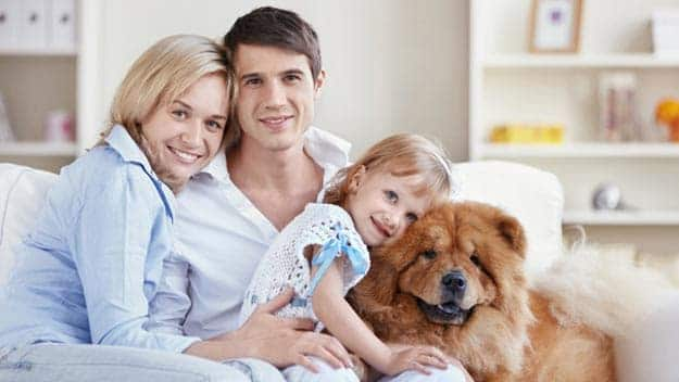 Wills & Trusts dog-young-family Direct Wills Walsall